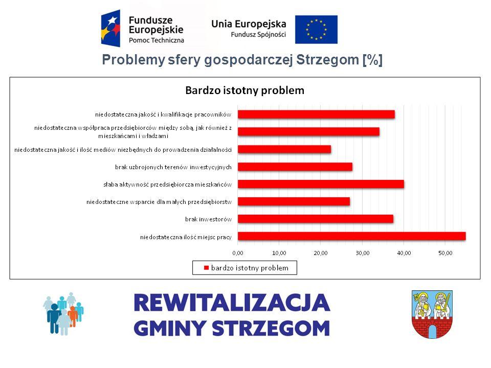 Problemy sfery gospodarczej Strzegom [%]