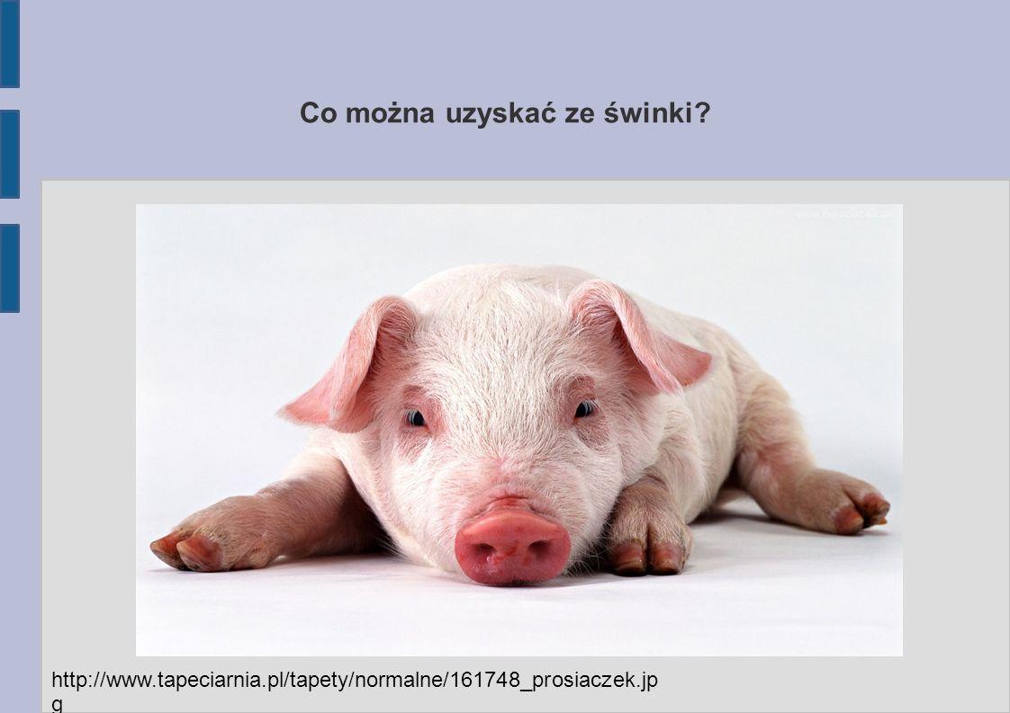 Co można uzyskać ze świnki http://www.tapeciarnia.pl/tapety/normalne/161748_prosiaczek.jp g