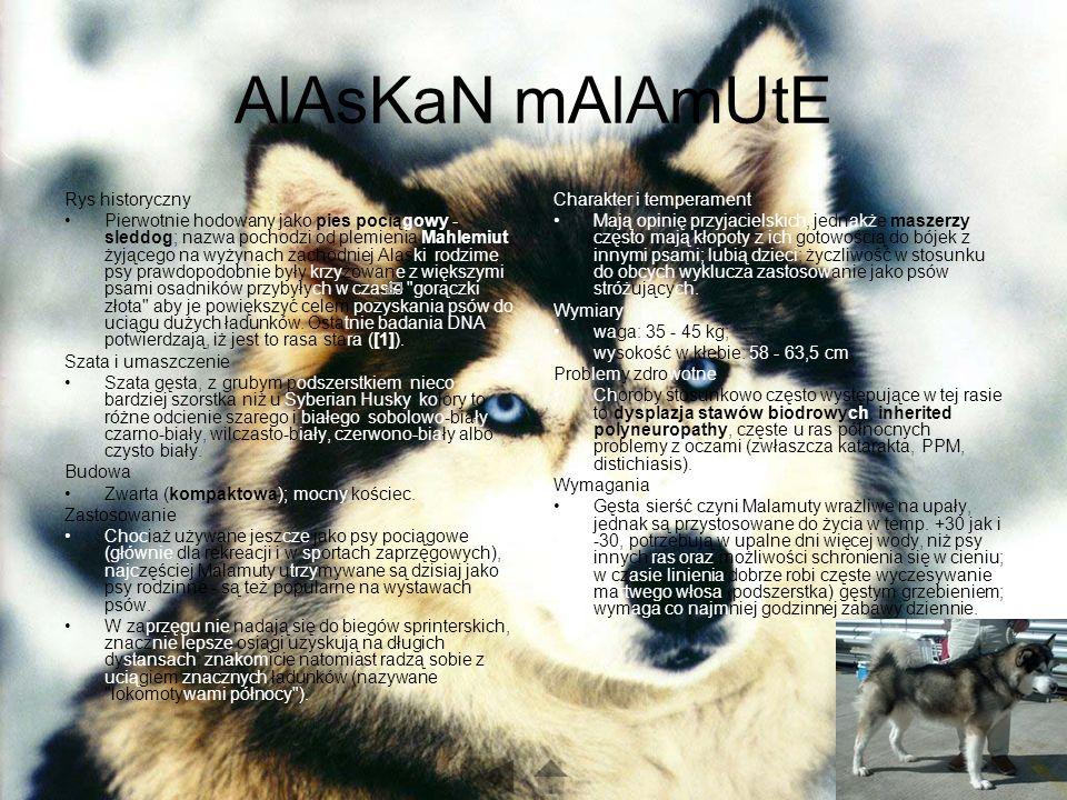AlAsKaN mAlAmUtE Rys historyczny Pierwotnie hodowany jako pies pociągowy - sleddog; nazwa pochodzi od plemienia Mahlemiut, żyjącego na wyżynach zachodniej Alaski; rodzime psy prawdopodobnie były krzyżowane z większymi psami osadników przybyłych w czasie gorączki złota aby je powiększyć celem pozyskania psów do uciągu dużych ładunków.