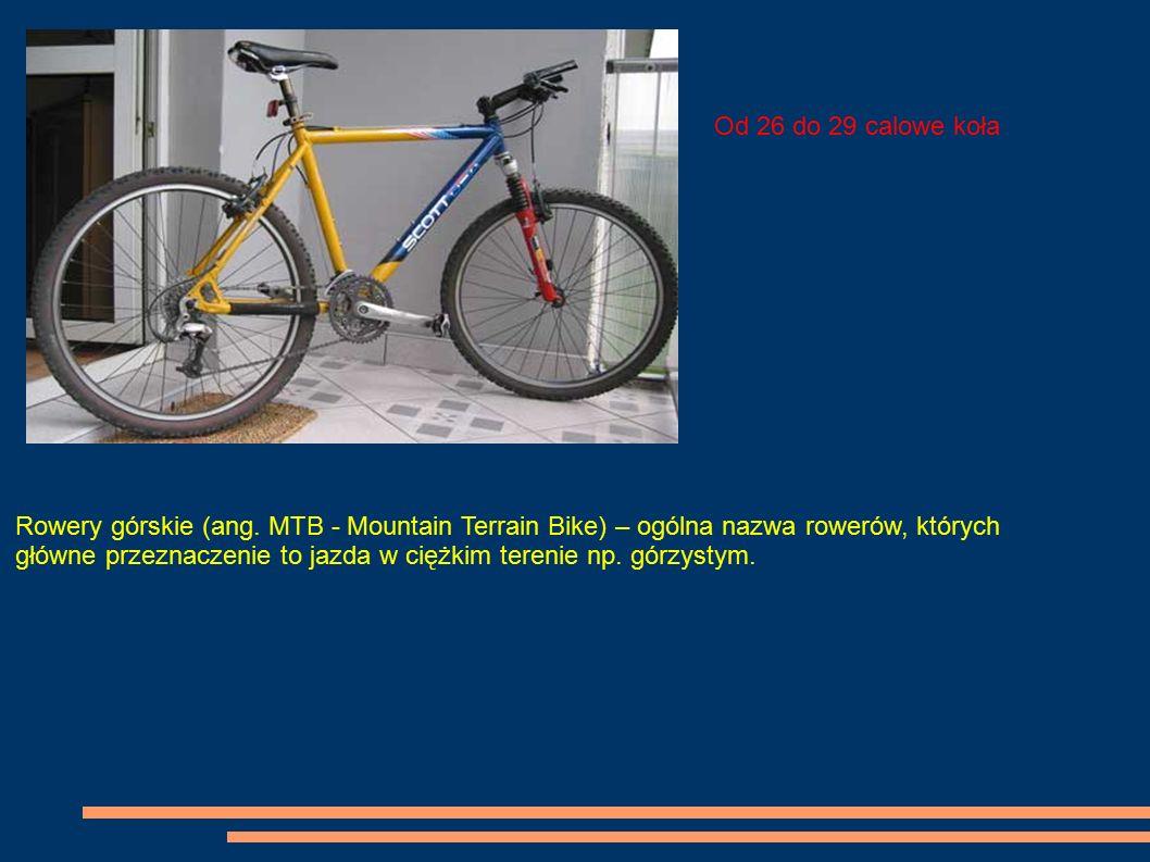 Rowery górskie (ang. MTB - Mountain Terrain Bike) – ogólna nazwa rowerów, których główne przeznaczenie to jazda w ciężkim terenie np. górzystym. Od 26