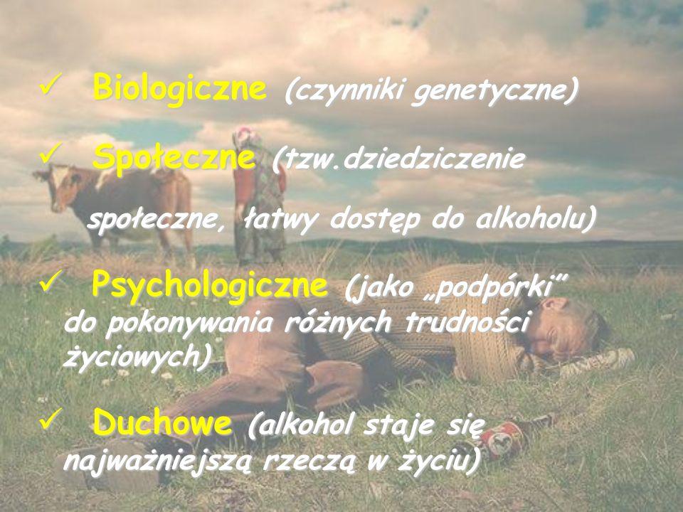 """Biologiczne (czynniki genetyczne) Biologiczne (czynniki genetyczne) Społeczne (tzw.dziedziczenie Społeczne (tzw.dziedziczenie społeczne, łatwy dostęp do alkoholu) społeczne, łatwy dostęp do alkoholu) Psychologiczne (jako """"podpórki do pokonywania różnych trudności życiowych) Psychologiczne (jako """"podpórki do pokonywania różnych trudności życiowych) Duchowe (alkohol staje się najważniejszą rzeczą w życiu) Duchowe (alkohol staje się najważniejszą rzeczą w życiu)"""