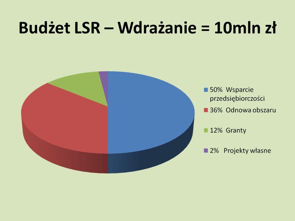 Budżet LSR – Wdrażanie = 10mln zł