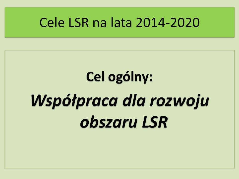 Cele LSR na lata 2014-2020 Cel ogólny: Współpraca dla rozwoju obszaru LSR Cel ogólny: Współpraca dla rozwoju obszaru LSR