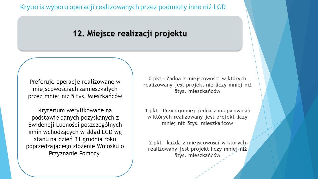 Kryteria wyboru operacji realizowanych przez podmioty inne niż LGD 12.