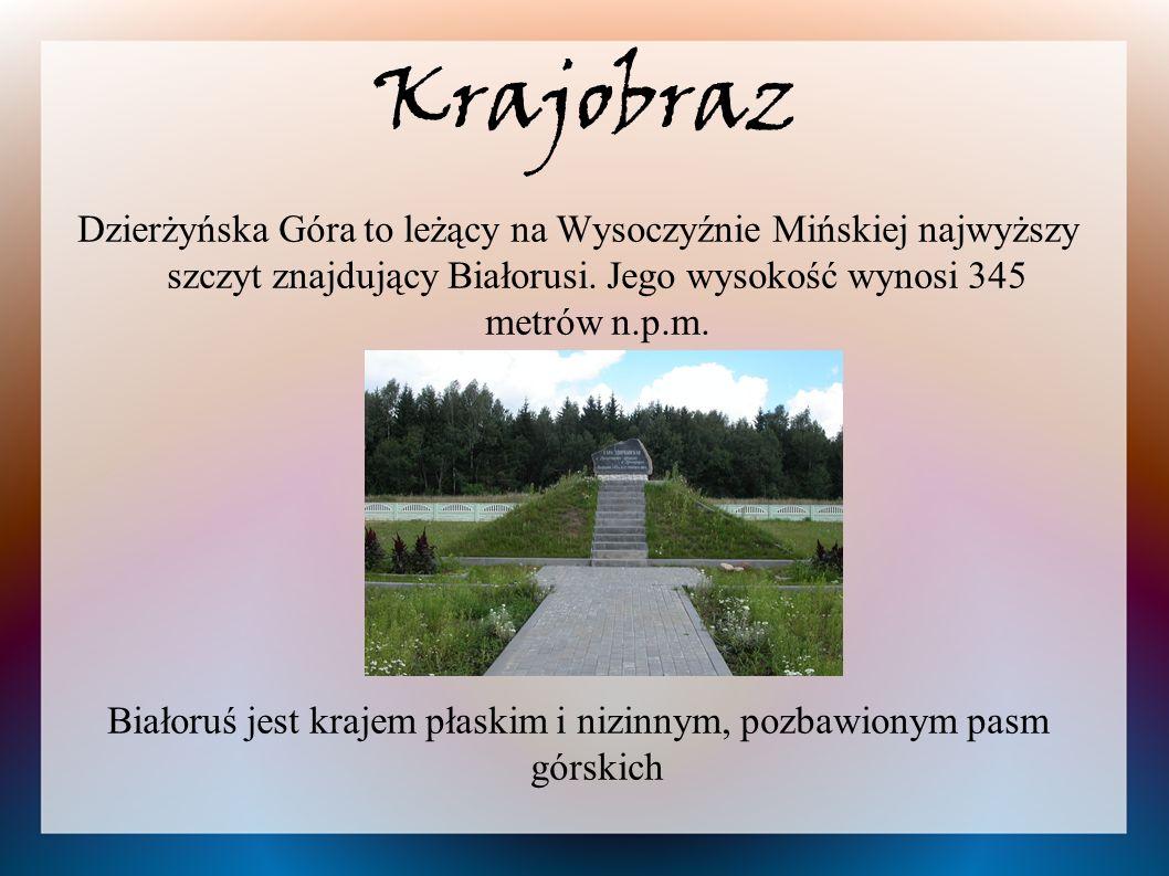 Krajobraz Dzierżyńska Góra to leżący na Wysoczyźnie Mińskiej najwyższy szczyt znajdujący Białorusi. Jego wysokość wynosi 345 metrów n.p.m. Białoruś je