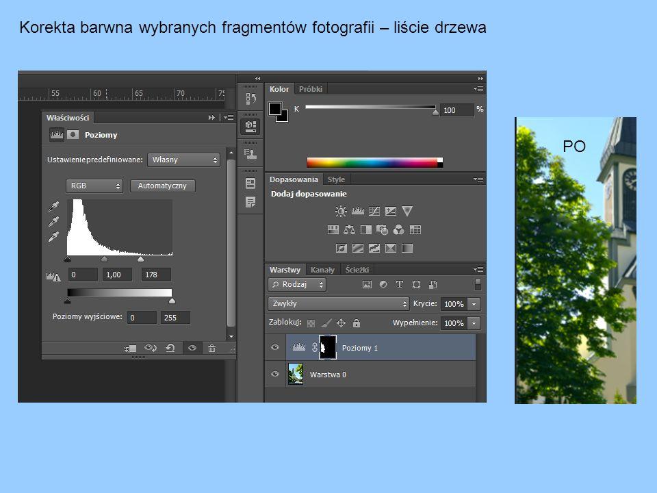 Korekta barwna wybranych fragmentów fotografii – liście drzewa PO