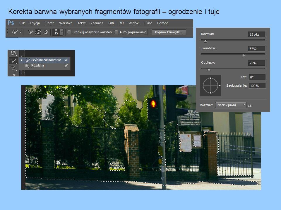 Korekta barwna wybranych fragmentów fotografii – ogrodzenie i tuje