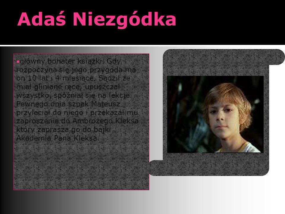 Adaś Niezgódka  główny bohater książki.