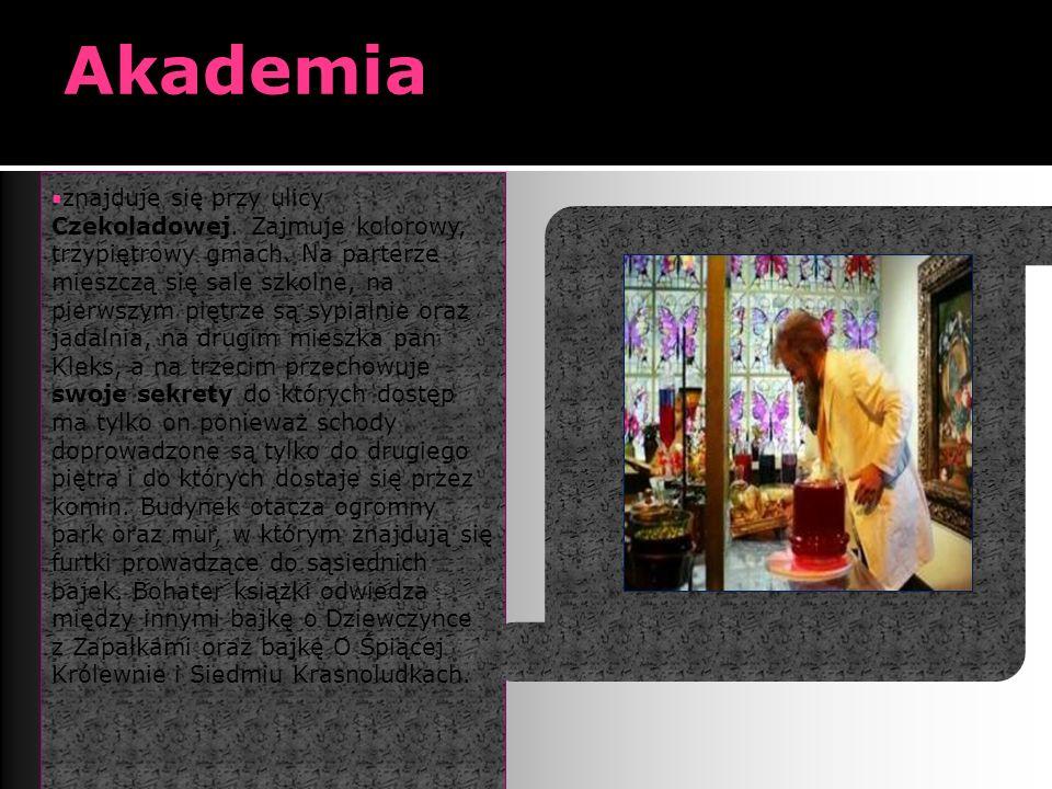 Akademia  znajduje się przy ulicy Czekoladowej. Zajmuje kolorowy, trzypiętrowy gmach.
