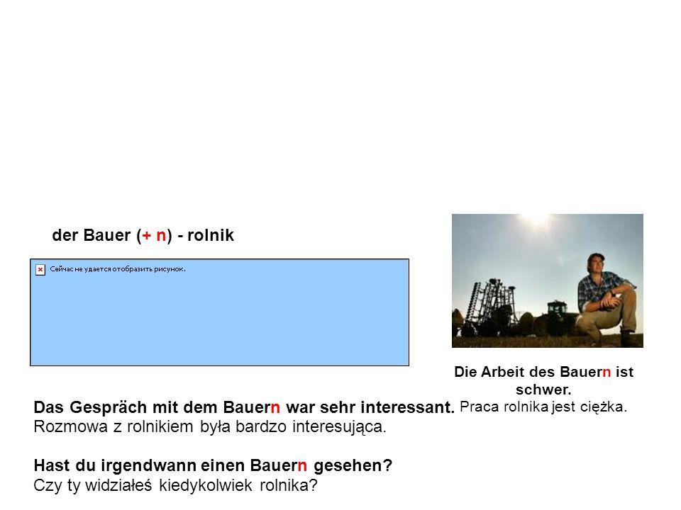 Ausnahmen - Beispiele Wyjątki - przykłady der Bauer (+ n) - rolnik Die Arbeit des Bauern ist schwer.