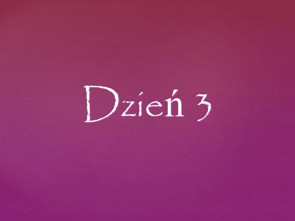 Dzie ń 3