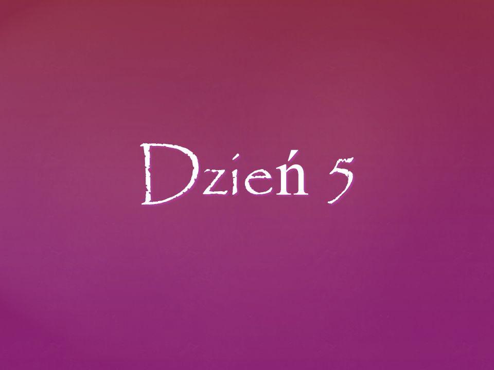 Dzie ń 5