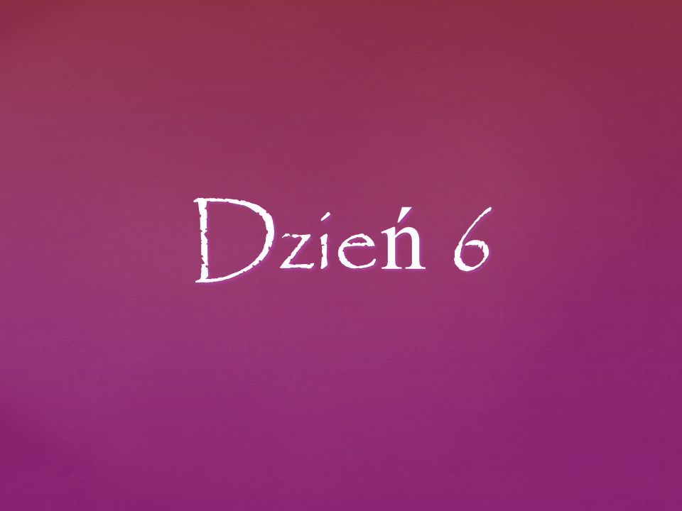 Dzie ń 6