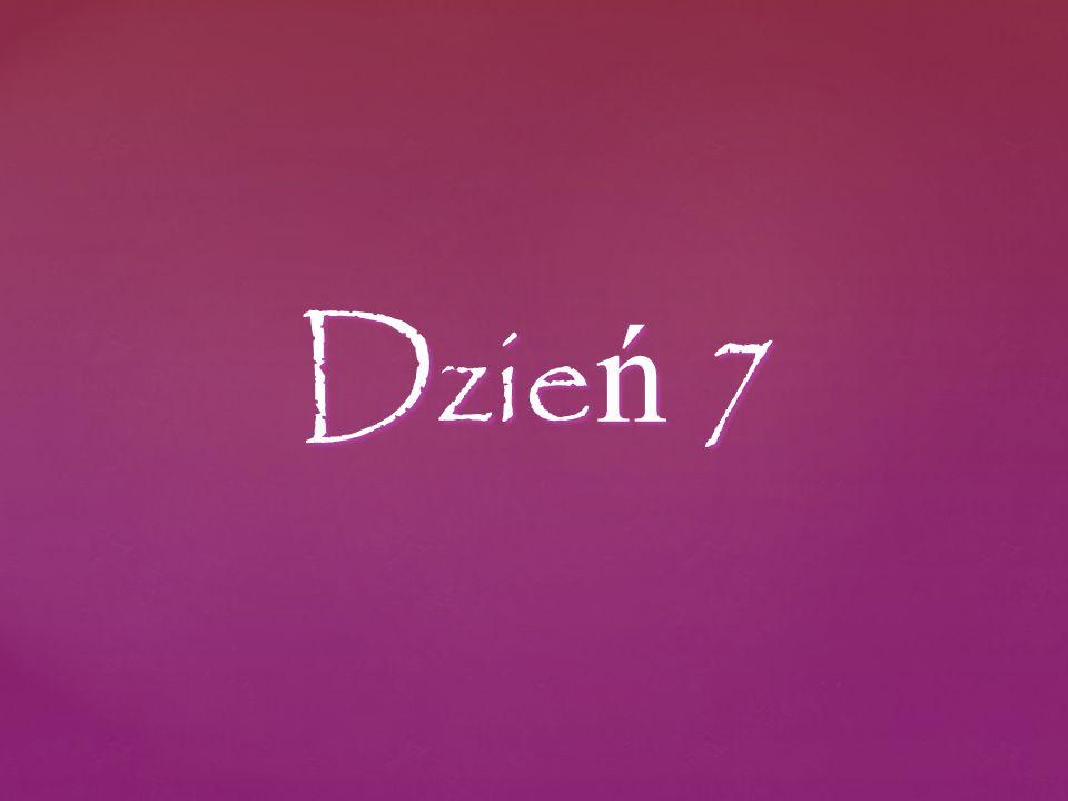 Dzie ń 7
