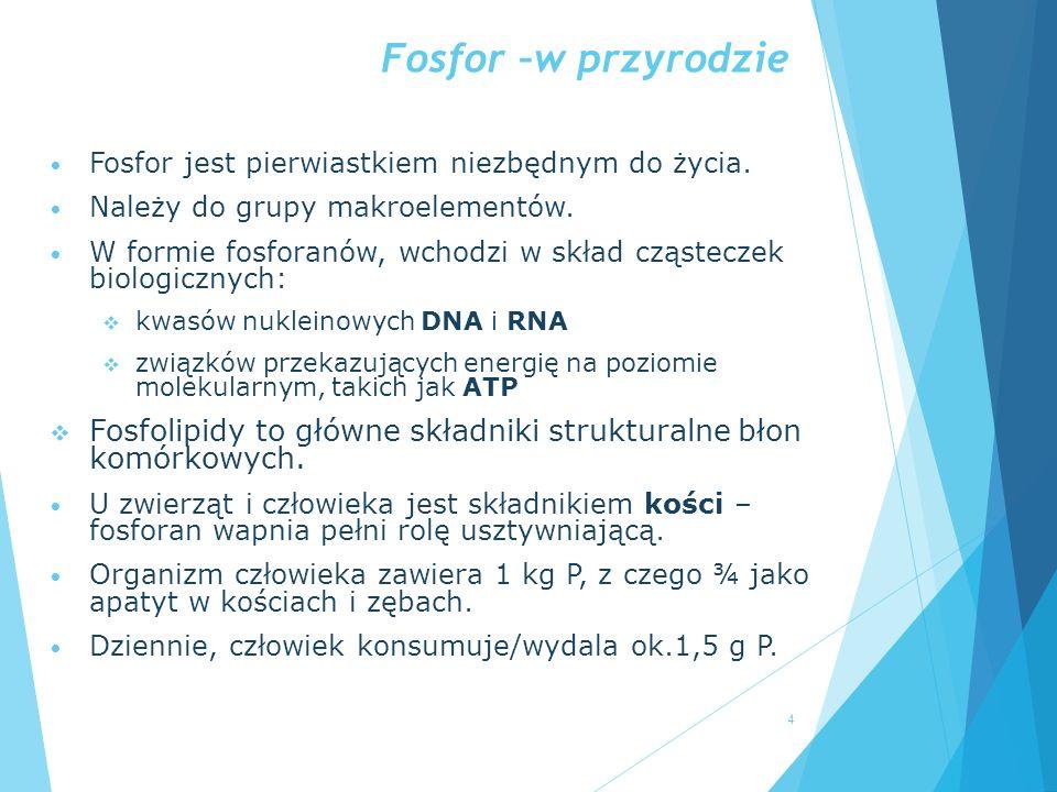 Fosfor –w przyrodzie Fosfor jest pierwiastkiem niezbędnym do życia. Należy do grupy makroelementów. W formie fosforanów, wchodzi w skład cząsteczek bi