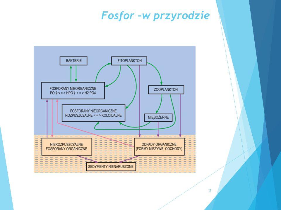 Fosfor – w diecie człowieka  Roczne spożycie fosforu w produktach spożywczych 0,5 kg P/Mk  Roczne spożycie fosforu przez mieszkańców Ziemi – 3mln ton P  Roczna produkcja zw.