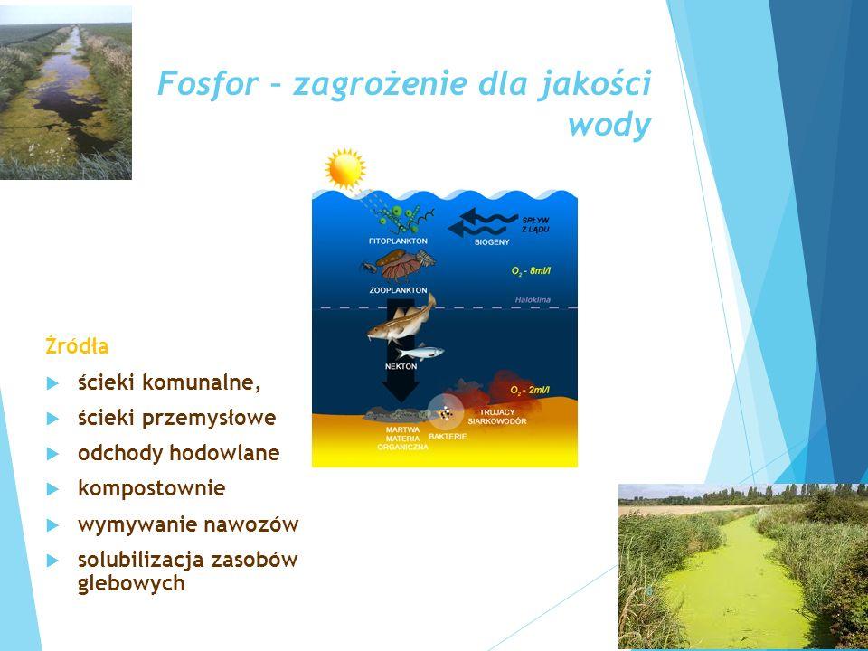 Fosfor – zagrożenie dla jakości wody Źródła  ścieki komunalne,  ścieki przemysłowe  odchody hodowlane  kompostownie  wymywanie nawozów  solubili