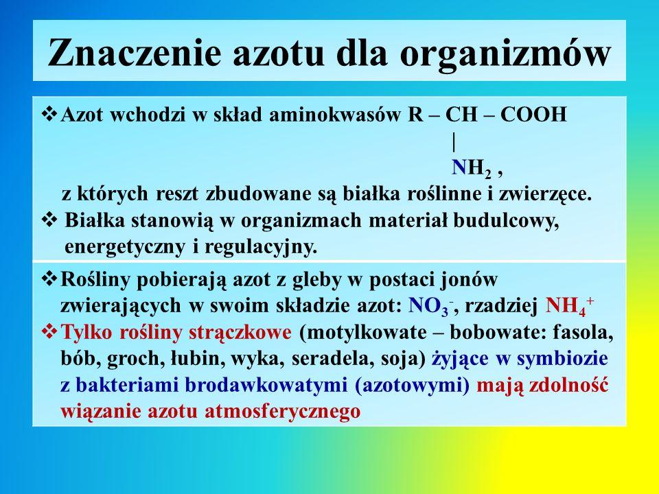Znaczenie azotu dla organizmów  Azot wchodzi w skład aminokwasów R – CH – COOH | NH 2, z których reszt zbudowane są białka roślinne i zwierzęce.