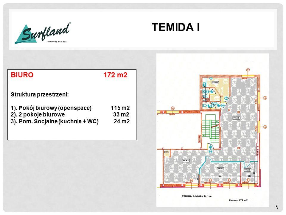5 TEMIDA I BIURO 172 m2 Struktura przestrzeni: 1).