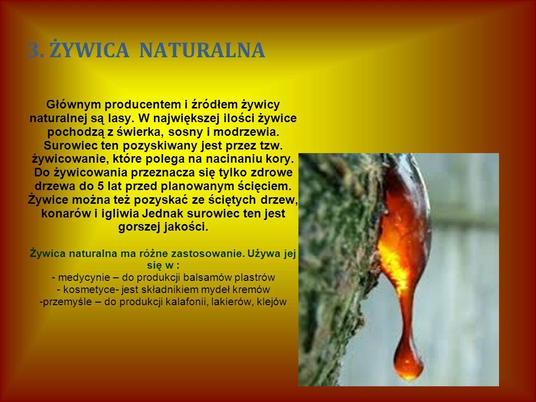 3. ŻYWICA NATURALNA Głównym producentem i źródłem żywicy naturalnej są lasy.