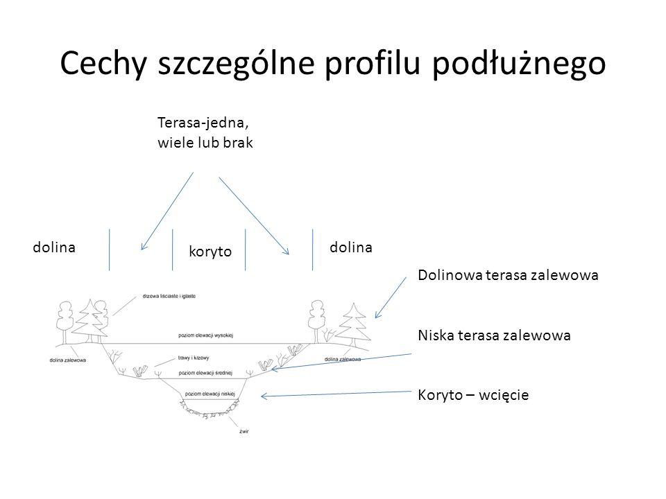 Cechy szczególne profilu podłużnego Dolinowa terasa zalewowa Niska terasa zalewowa Koryto – wcięcie dolina Terasa-jedna, wiele lub brak dolina koryto