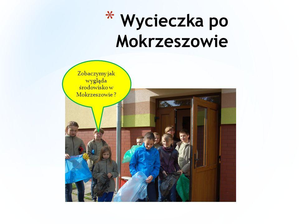 * Nasze środowisko jest zanieczyszczone przez ludzi, ponieważ ludziom nie chce się wyrzucać śmieci do kosza, tylko wyrzucają byle gdzie, ale dzieci ze szkoły w Mokrzeszowie dbają o środowisko i starają się żeby nasze środowisko było czystsze.