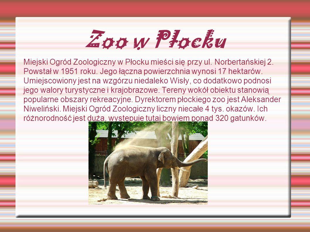 Zoo w Płocku Miejski Ogród Zoologiczny w Płocku mieści się przy ul. Norbertańskiej 2. Powstał w 1951 roku. Jego łączna powierzchnia wynosi 17 hektarów