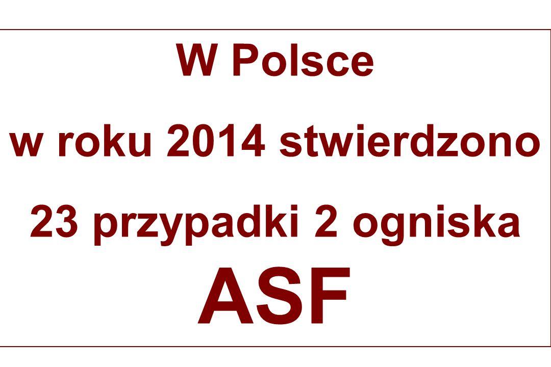 W Polsce w roku 2014 stwierdzono 23 przypadki 2 ogniska ASF