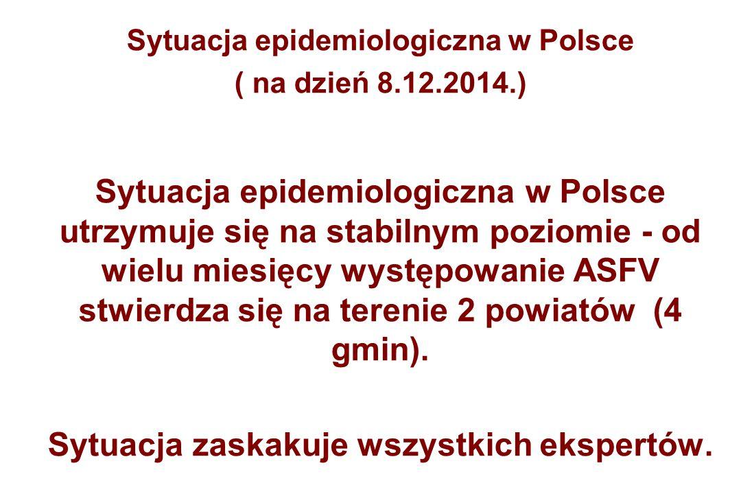 Sytuacja epidemiologiczna w Polsce ( na dzień 8.12.2014.) Sytuacja epidemiologiczna w Polsce utrzymuje się na stabilnym poziomie - od wielu miesięcy występowanie ASFV stwierdza się na terenie 2 powiatów (4 gmin).