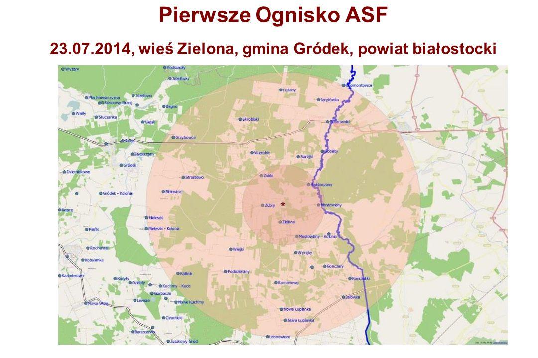 Pierwsze Ognisko ASF 23.07.2014, wieś Zielona, gmina Gródek, powiat białostocki
