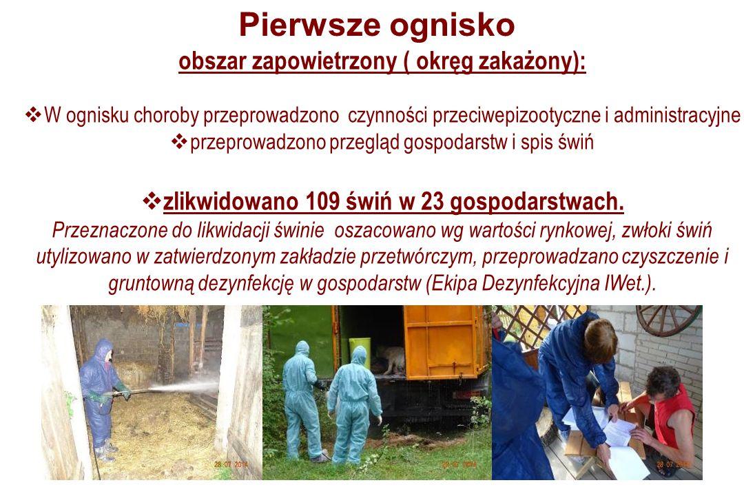 obszar zapowietrzony ( okręg zakażony):  W ognisku choroby przeprowadzono czynności przeciwepizootyczne i administracyjne  przeprowadzono przegląd gospodarstw i spis świń  zlikwidowano 109 świń w 23 gospodarstwach.