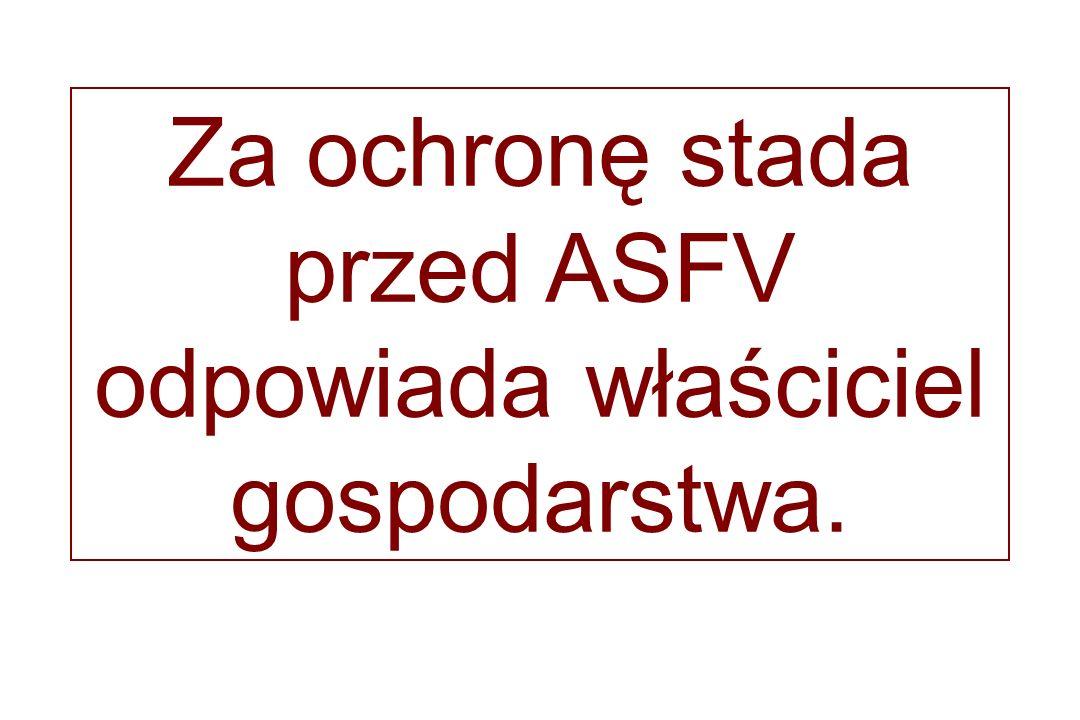 Za ochronę stada przed ASFV odpowiada właściciel gospodarstwa.