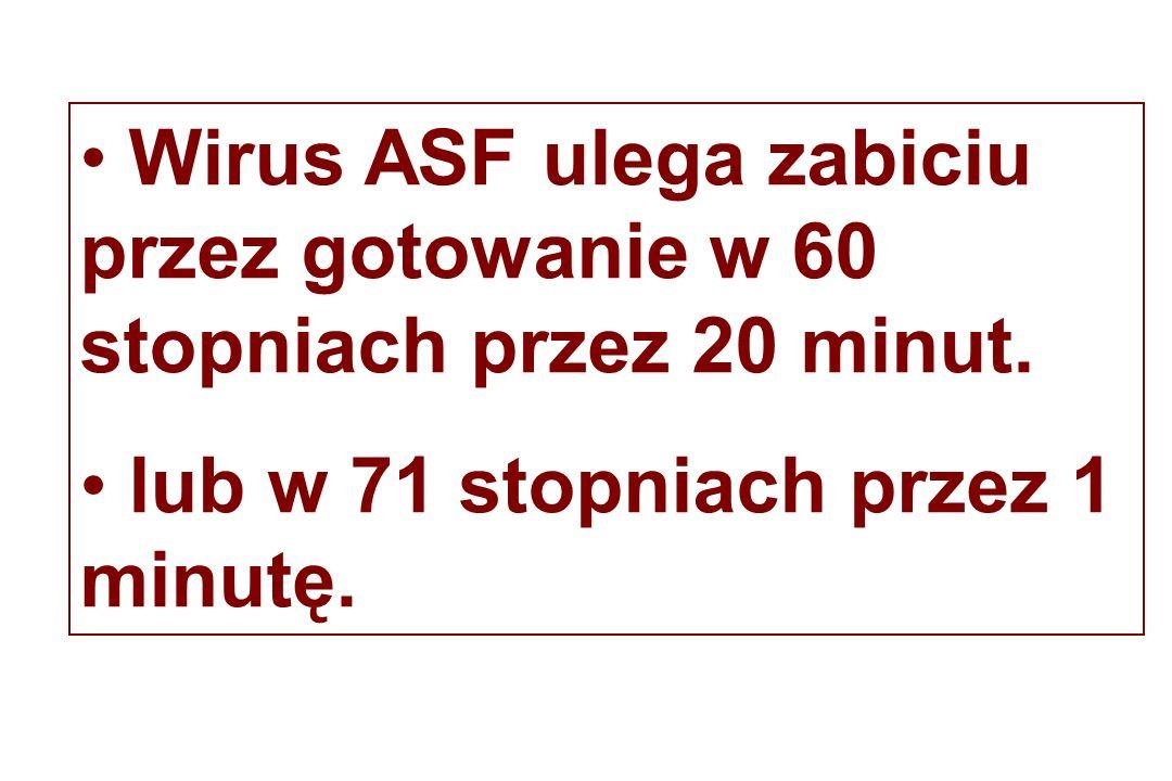 Wirus ASF ulega zabiciu przez gotowanie w 60 stopniach przez 20 minut.