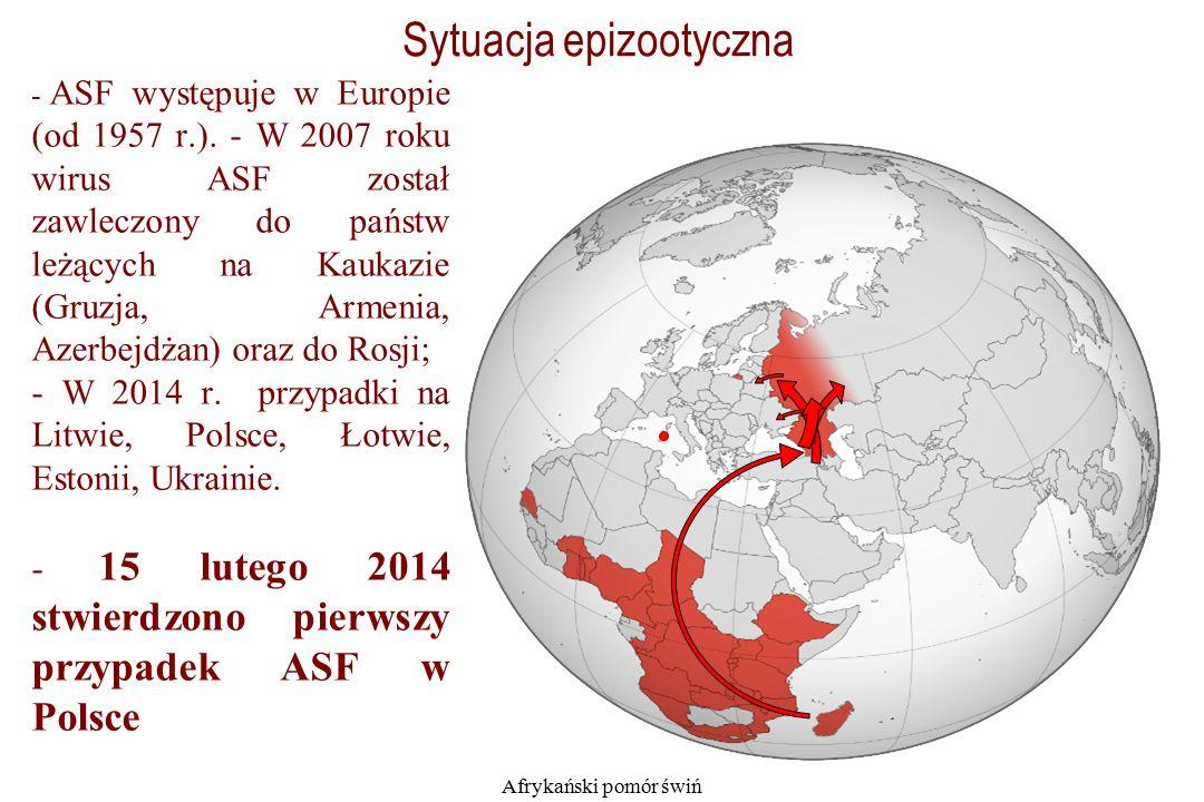 Afrykański pomór świń - ASF występuje w Europie (od 1957 r.).
