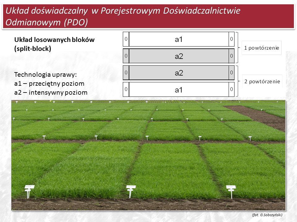 Układ doświadczalny w Porejestrowym Doświadczalnictwie Odmianowym (PDO) Technologia uprawy: a1 – przeciętny poziom a2 – intensywny poziom Układ losowanych bloków (split-block) (fot.
