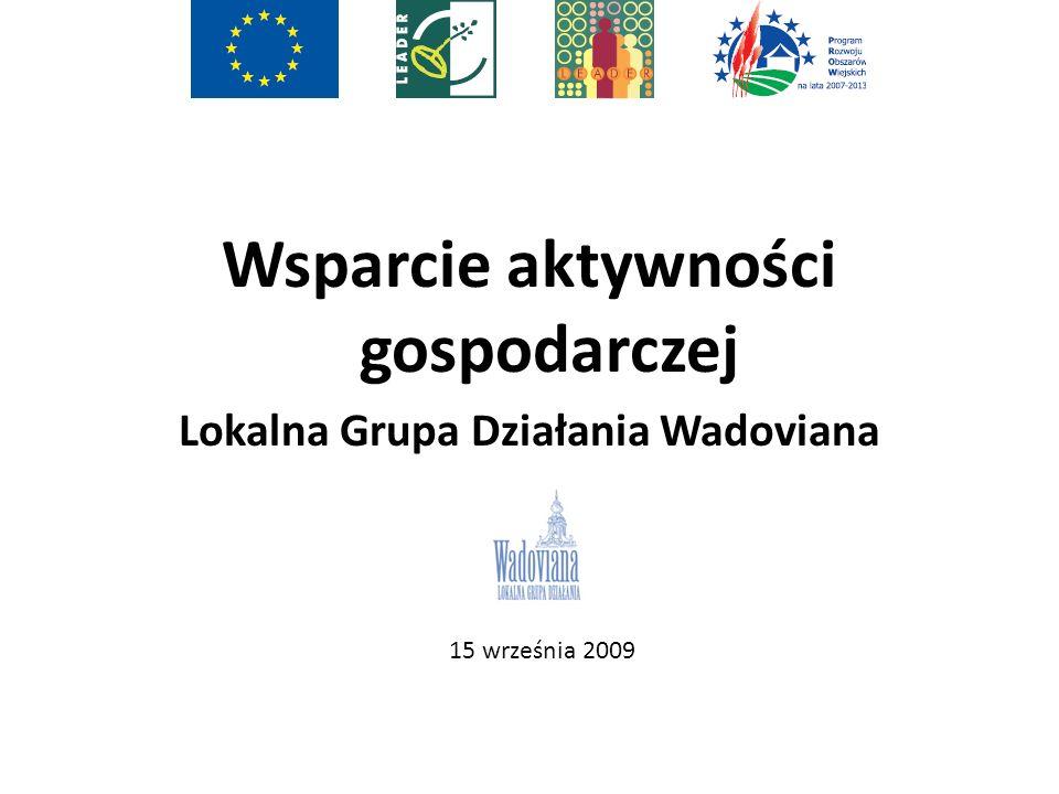 Wsparcie aktywności gospodarczej Lokalna Grupa Działania Wadoviana 15 września 2009
