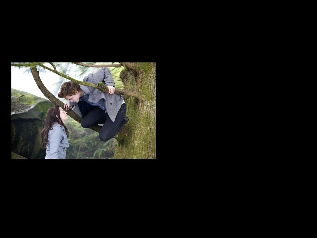Edward Cullen-Stosunek do świata ludzi Edward Cullen ma bardzo dobry stosunek do świata ludzi.