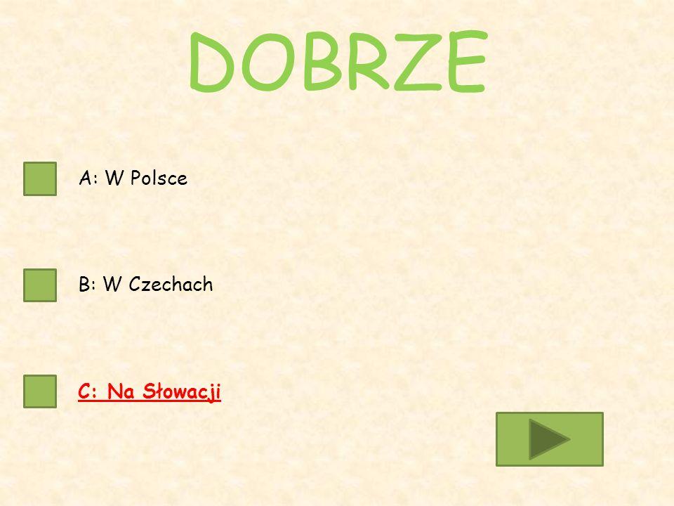 A: W Polsce B: W Czechach C: Na Słowacji DOBRZE