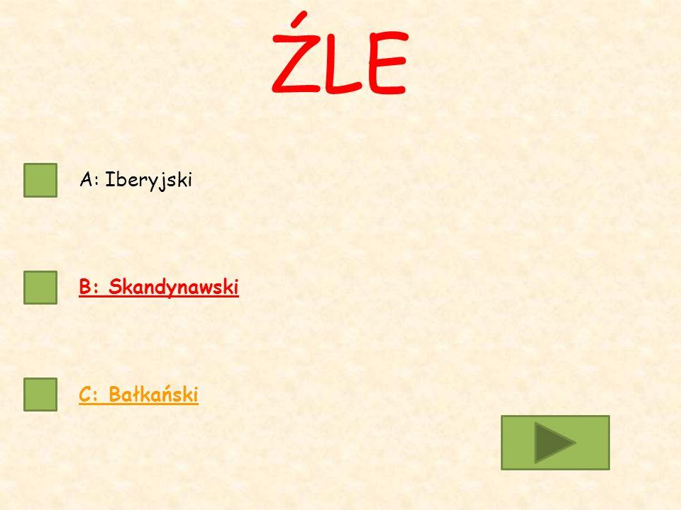 A: Iberyjski B: Skandynawski C: Bałkański ŹLE