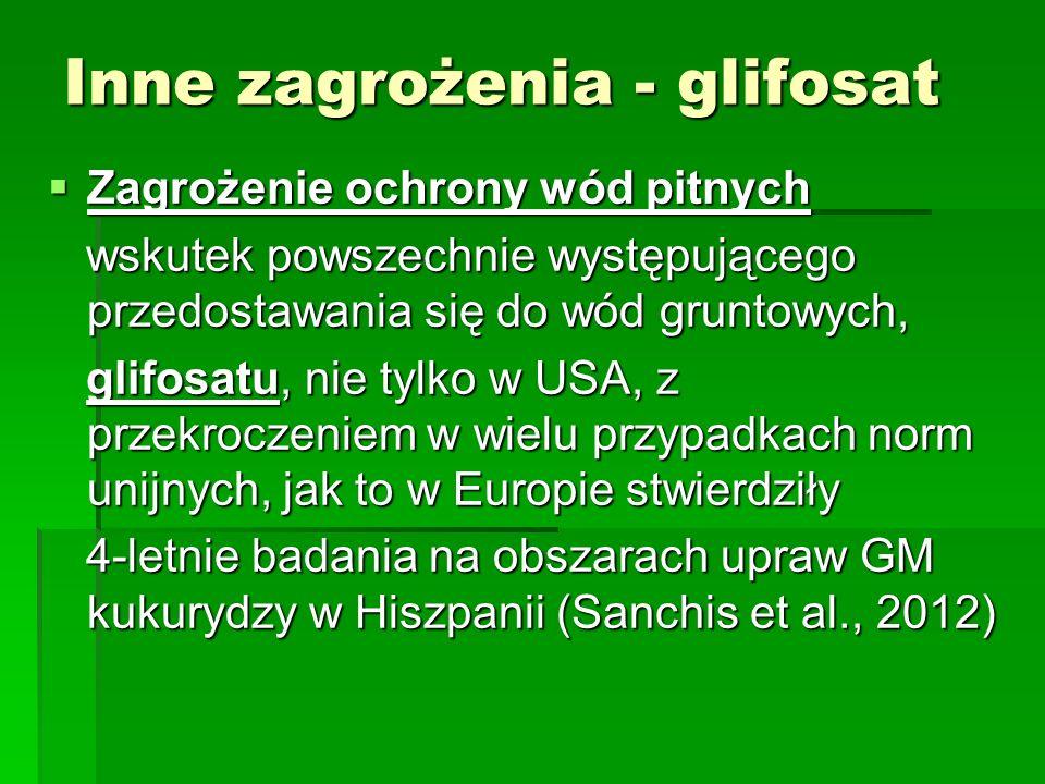 Inne zagrożenia - glifosat  Zagrożenie ochrony wód pitnych wskutek powszechnie występującego przedostawania się do wód gruntowych, wskutek powszechnie występującego przedostawania się do wód gruntowych, glifosatu, nie tylko w USA, z przekroczeniem w wielu przypadkach norm unijnych, jak to w Europie stwierdziły glifosatu, nie tylko w USA, z przekroczeniem w wielu przypadkach norm unijnych, jak to w Europie stwierdziły 4-letnie badania na obszarach upraw GM kukurydzy w Hiszpanii (Sanchis et al., 2012) 4-letnie badania na obszarach upraw GM kukurydzy w Hiszpanii (Sanchis et al., 2012)