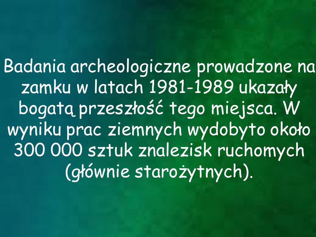 Badania archeologiczne prowadzone na zamku w latach 1981-1989 ukazały bogatą przeszłość tego miejsca. W wyniku prac ziemnych wydobyto około 300 000 sz