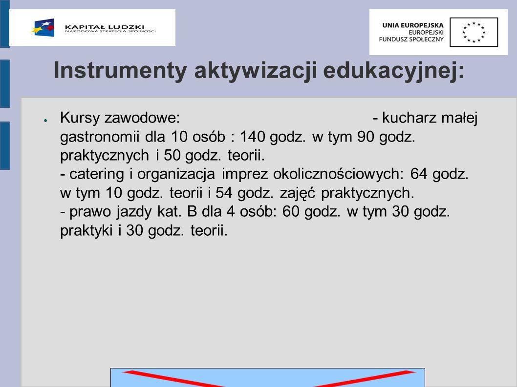 Instrumenty aktywizacji edukacyjnej: ● Kursy zawodowe: - kucharz małej gastronomii dla 10 osób : 140 godz.