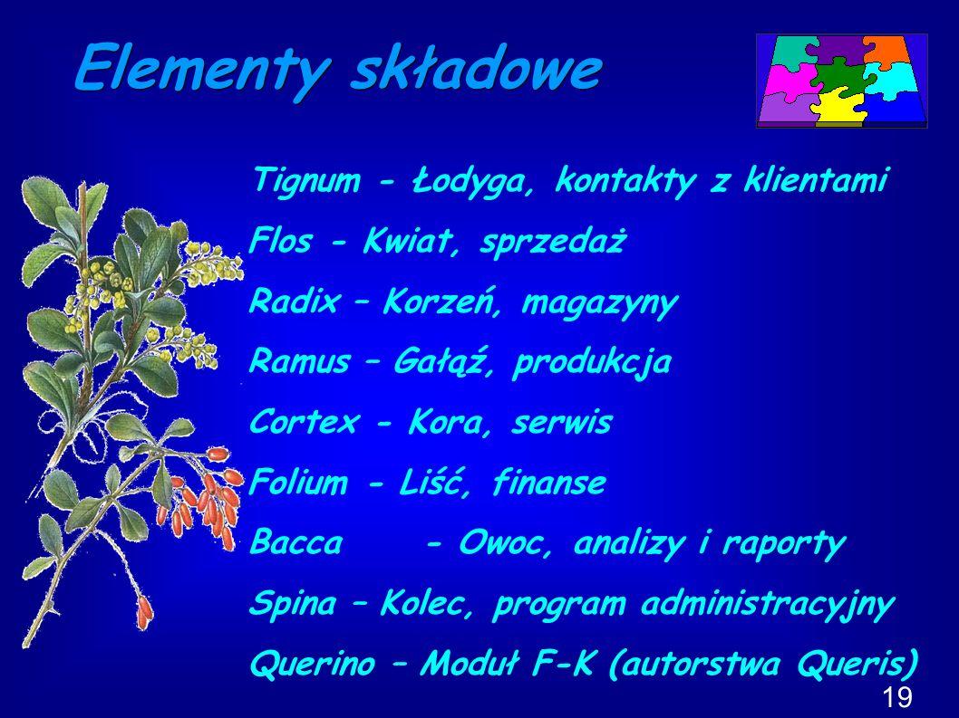 Elementy składowe Tignum - Łodyga, kontakty z klientami Flos - Kwiat, sprzedaż Radix – Korzeń, magazyny Ramus – Gałąź, produkcja Cortex - Kora, serwis Folium - Liść, finanse Bacca - Owoc, analizy i raporty Spina – Kolec, program administracyjny Querino – Moduł F-K (autorstwa Queris) 19