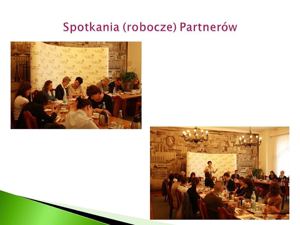 Model współpracy międzysektorowej LPPS - szkolenia dla kadry zarządzającej instytucji/organizacji członkowskich LPPS