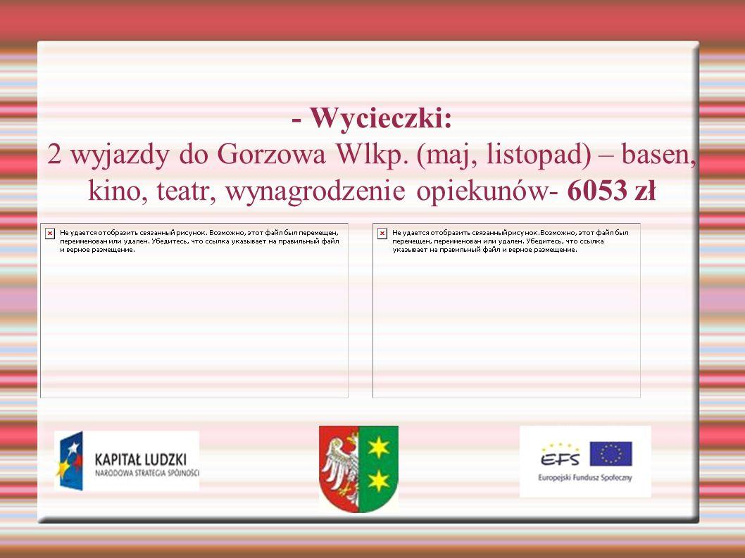 - Wycieczki: 2 wyjazdy do Gorzowa Wlkp. (maj, listopad) – basen, kino, teatr, wynagrodzenie opiekunów- 6053 zł