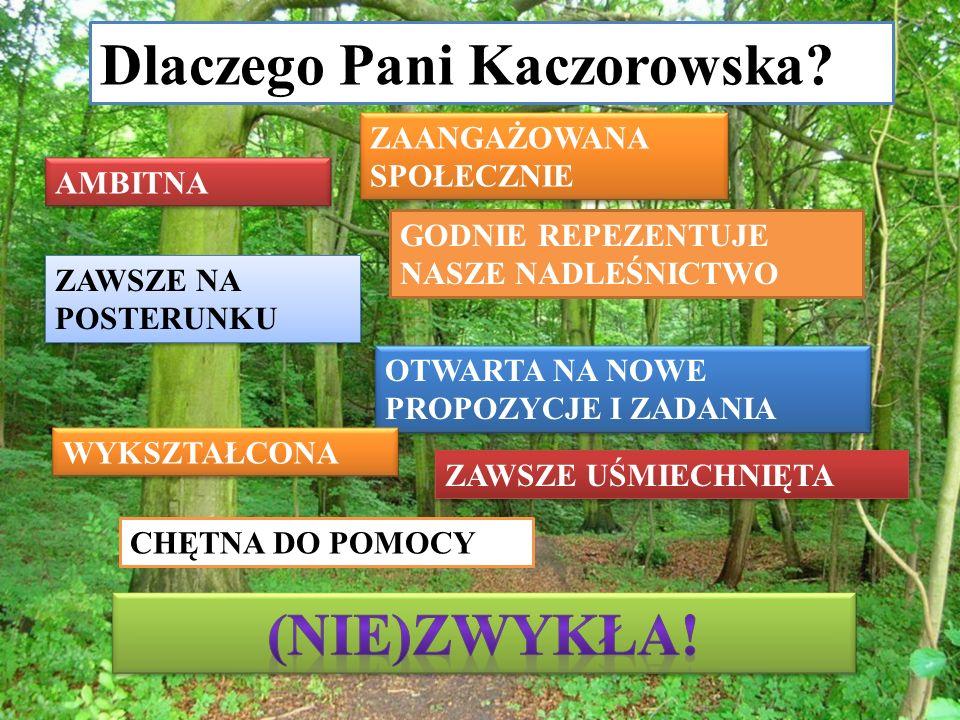 Dlaczego Pani Kaczorowska.