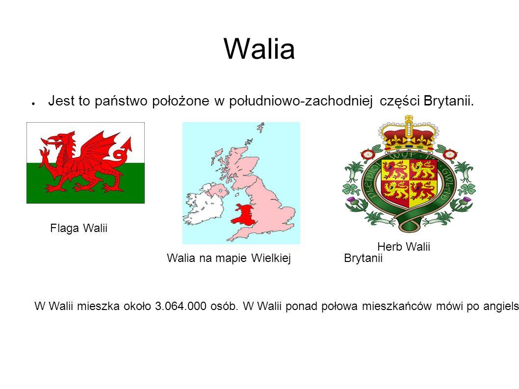 Cardiff ● Stolicą Walii jest Cardiff Cardiff Bay (Miasteczko portowe) Caernarfon Castle (Zamek) Burmistrzem Cardiff jest Heather Joyce.