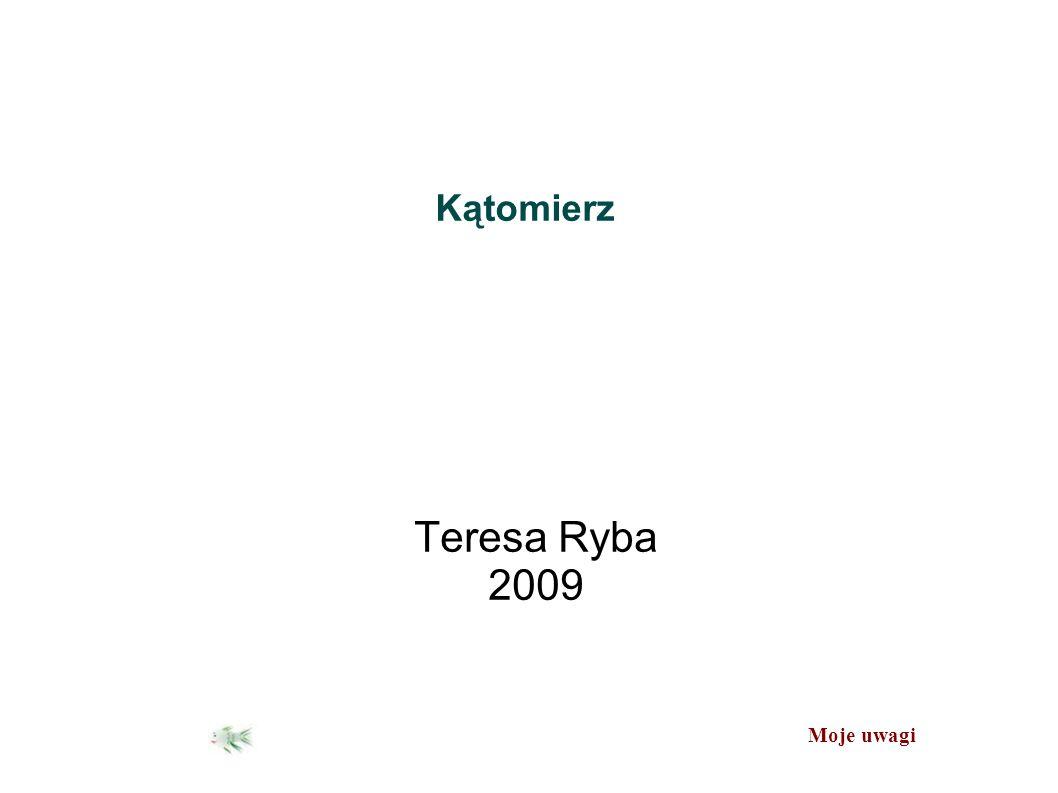 Moje uwagi Kątomierz Teresa Ryba 2009