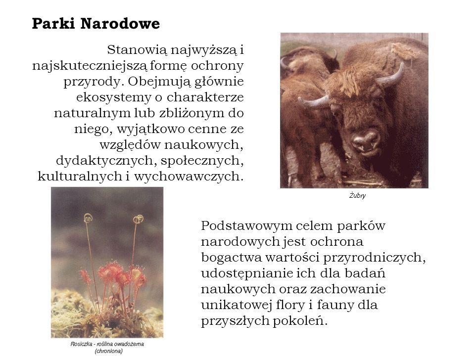 Stanowią najwyższą i najskuteczniejszą formę ochrony przyrody.