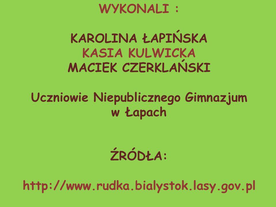 WYKONALI : KAROLINA ŁAPIŃSKA KASIA KULWICKA MACIEK CZERKLAŃSKI Uczniowie Niepublicznego Gimnazjum w Łapach ŹRÓDŁA: http://www.rudka.bialystok.lasy.gov.pl